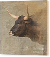 Texas Longhorn # 3 Wood Print