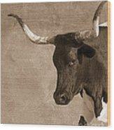 Texas Longhorn #6 Wood Print