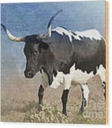 Texas Longhorn #7 Wood Print by Betty LaRue