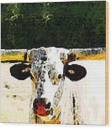 Texas Longhorn - Bull Cow Wood Print by Sharon Cummings
