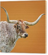 Texas Longhorn Steer Wood Print