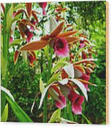 Texas Orchids Wood Print