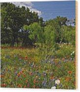 Texas Spring Spectacular Wood Print