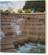 Texas Water Gardens Wood Print