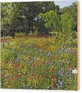 Texas Wildflower Medley Wood Print
