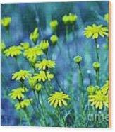 Texas Wildflowers V4 Wood Print