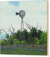 Texas Windmill And Bluebonnets Wood Print