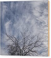 Texas Winter Clouds Wood Print