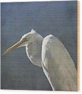 Textured Great Egret Wood Print