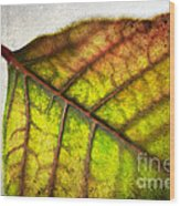 Textured Leaf Abstract Wood Print