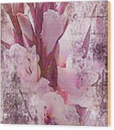 Textured Pink Gladiolas Wood Print