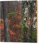 Textures Of Fall Wood Print