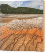 Textures Of The Grand Prismatic  Wood Print