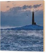 Thacher Island Lighthouse Seagull Passes Wood Print