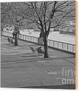Thames Walkway Wood Print