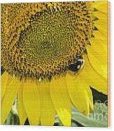 Thank God For Sunflowers Wood Print