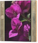 Thank You - Bougainvillea Flowers Wood Print