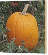 Thanksgiving Harvest Wood Print
