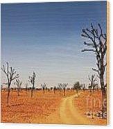 Thar Desert Wood Print