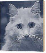 That Cat Wood Print