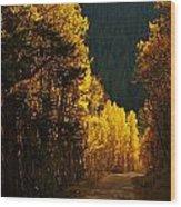 The Golden Road Wood Print
