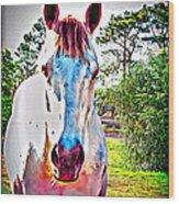 That Horses Face Wood Print