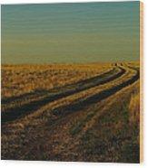 That Long Long Road Wood Print