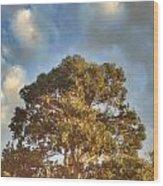 That Peaceful Tree Again Wood Print