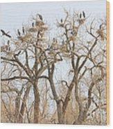 Thats A Lot Of Heron Wood Print