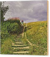The 23 Steps On Parliament Hill Wood Print