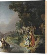 The Abduction Of Europa Wood Print