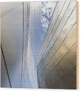 The Abstract Curves Of The Disney Concert Hall Wood Print