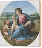 The Alba Madonna Wood Print by Raffaello Sanzio of Urbino