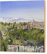 The Alhambra Granada Wood Print