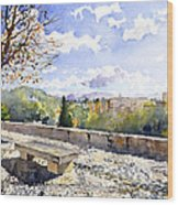 The Alhambra In Autumn Wood Print