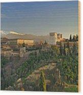 The Alhambra Palace Wood Print