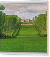 The Allee And The Castle Wood Print
