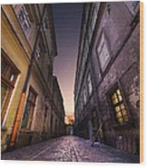 The Alley Of Cracov Wood Print
