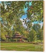 The Alumni Memorial Grove Towards Founders Hall Wood Print