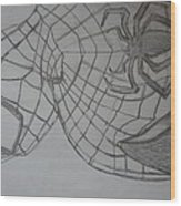 the amazing Spiderman 2 Wood Print