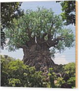 The Amazing Tree Of Life  Wood Print