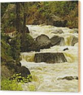 The Amsden River Wyoming Wood Print