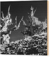 The Ancients - 1001 Wood Print by Paul W Faust -  Impressions of Light