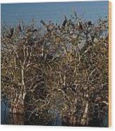 The Anhinga Trees Wood Print