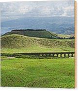 The Aqueduct Panoramic Wood Print