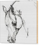 The Arabian Horse Sketch Wood Print