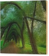 The Arch Of Heaven Wood Print
