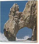 The Arch Of Los Cabos San Lucas Wood Print