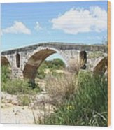 The Arches Of Pont St. Julien Wood Print
