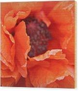 The Art Of Poppy Wood Print